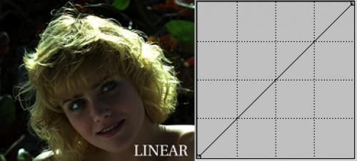 Linear beeld