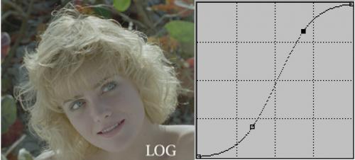 Logaritmisch beeld